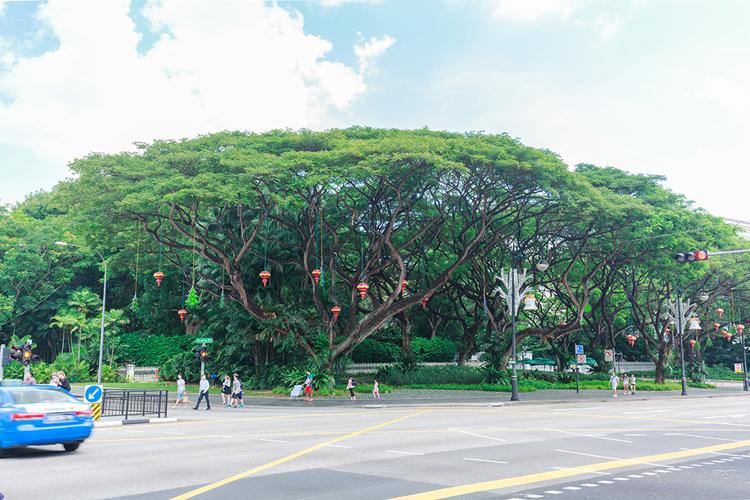 перекресток на Орчард роуд в Сингапуре